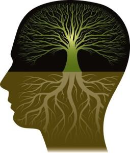 психо-биология2